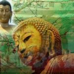 Bodh Vandana Amravati media broadcast services satcom media lord buddha sharnam