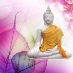 media broadcast services satcom media lord buddha sharnam